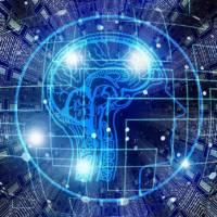 Алгоритм действий по регистрации резидентов парка высоких технологий (ПВТ)